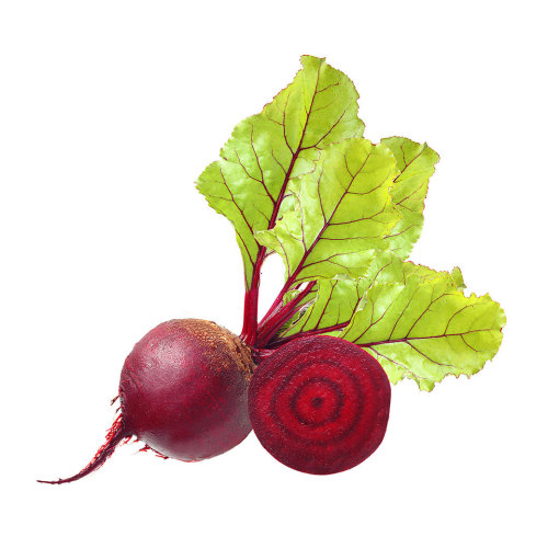 Beets, Bunched Red-Organic