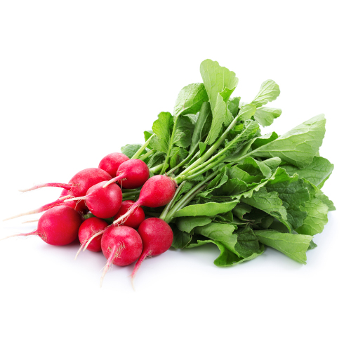 Radishes, Bunched Red-Organic
