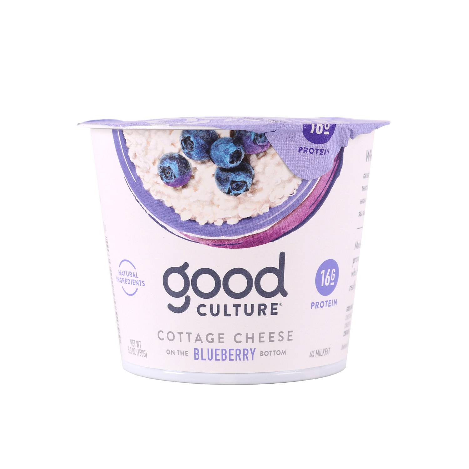 Cottage Cheese, Blueberry