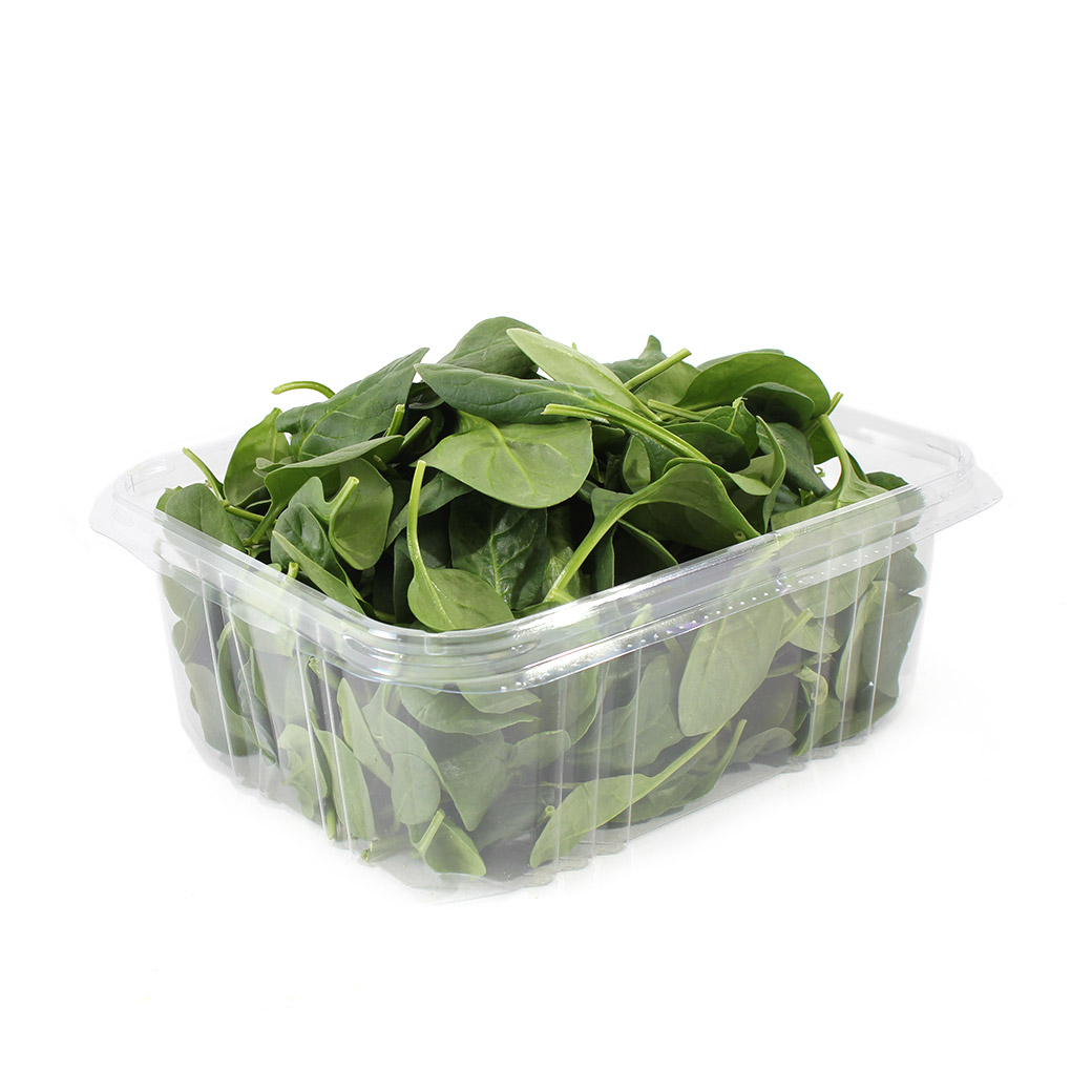 Spinach, Baby-Organic