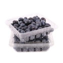 Blueberries 2-Pack, Fair Trade-Organic