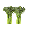 Broccoli, 2-PACK Sweet Baby-Organic