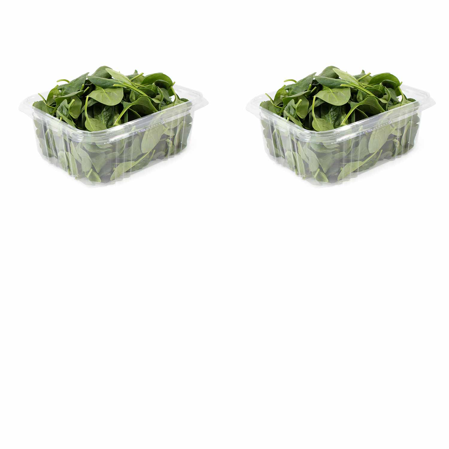 Baby Spinach 2-pack (Organic)